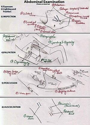 Abdominal examination - Abdominal examination