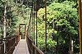 Abey falls Hanging bridge.jpg