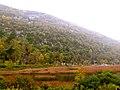 Acadia National Park (8111138987).jpg