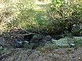 Afon Gorddinan - geograph.org.uk - 617932.jpg