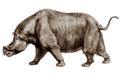 Aktautitan hippopotamopus.png