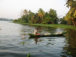 Alappuzha district - Backwaters in Alappuzha