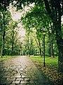Alley 01 (Kamyanets-Podilskyi).jpg