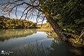 Along the Rhône river.jpg