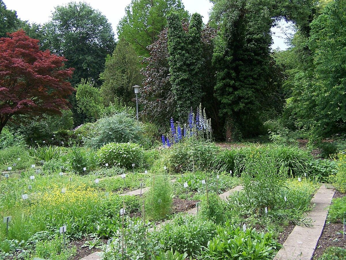 Old Botanical Garden Of Göttingen University