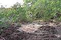 Alto Araguaia - State of Mato Grosso, Brazil - panoramio (1155).jpg
