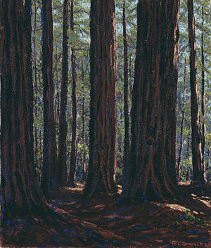Wallace Leroy DeWolf - Among the Redwoods, an oil painting by DeWolf in the collection of the Art Institute of Chicago.