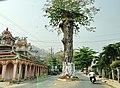 An định,tt Ba chúc, tri tôn, angiang, vietnam - panoramio.jpg