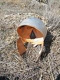 Ancient helmet (replica 1) - Kelin.jpg