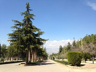 Anjar, Lebanon - The main road in Anjar