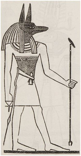 Archivo:Anubis (in Illustrated List of the principal Egyptian Divinities) (1888) - TIMEA.jpg