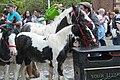 Appleby Horse Fair (7172485159).jpg