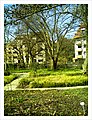 April Botanischer Garten Freiburg - Master Botany Photography 2013 - panoramio (2).jpg