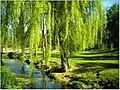 April Parc Natural Freiburg Germany - Master Landscape Rhine Valley Photography 2014 Landgut Mundenhof - panoramio (43).jpg