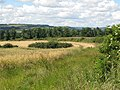Arable land and woods west of Newton - geograph.org.uk - 490138.jpg