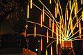 Arbres et lumières Echinodermus.JPG
