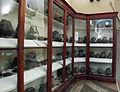 Archeologico di bologna, sezione villanoviana.JPG