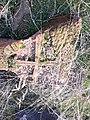 Arinj khachkar, old graveyard (53).jpg