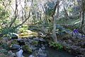 Arisugawa-no-miya Memorial Park - DSC06887.JPG
