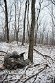 Army Mountain Warfare School winter exercises 160324-Z-QK503-015.jpg