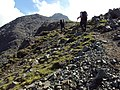 Ascending Sgurr Dearg ridge - geograph.org.uk - 1356648.jpg