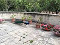 Attard San Anton Gardens 13.jpg