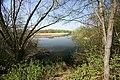 Attenborough nature reserve - geograph.org.uk - 569457.jpg