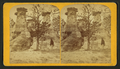 Austin's Glen. (Natural monuments.) Five miles from Colorado Springs, Colorado, by Gurnsey, B. H. (Byron H.), 1833-1880.png
