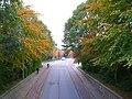 Autumn colors in suburban Rotterdam.JPG