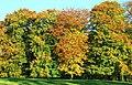 Autumn on the Lagan - geograph.org.uk - 1028288.jpg