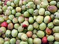 Avanos-Abricots verts.jpg