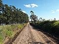 Avenida Dezessete de Dezembro - Palma - Santa Maria, foto 06 (sentido N-S).jpg - panoramio.jpg