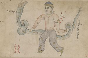 Ophiuchus - Ophiuchus in a manuscript copy of Azophi's Uranometry, 18th-century copy of a manuscript prepared for Ulugh Beg in 1417 (note that as in all pre-modern star charts, the constellation is mirrored, with Serpens Caput  on the left and Serpens Cauda on the right).