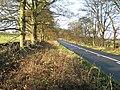 B6278 from Shotley Bridge to Edmundbyers - geograph.org.uk - 282302.jpg
