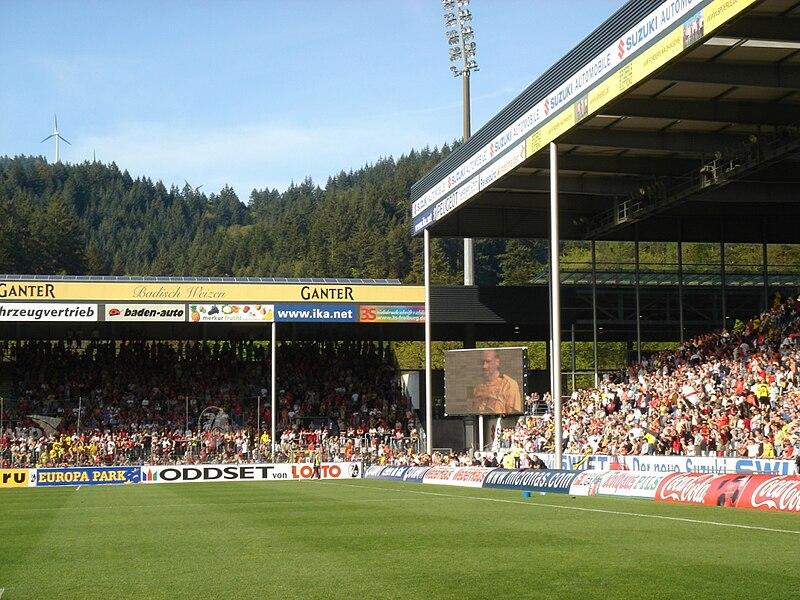 Фрайбург футбольний клуб