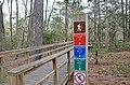 Bald Cypress Trail First Landing State Park-boardwalk-2 (33208545505).jpg