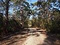 Bambara road - panoramio (1).jpg