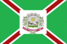 Bandeira Santana.png