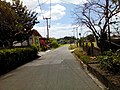 Barangay Malibo Matanda - panoramio (56).jpg