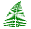 Barnsley fern with different coefficients plotted with VisSim.PNG