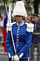 Bastille Day 2014 Paris - Color guards 007.jpg