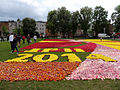 Bdg WM dywanykwiatowe 19 05-2014.jpg