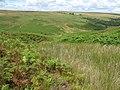 Beautie Sike - geograph.org.uk - 524805.jpg