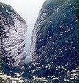 Bempton Cliffs - geograph.org.uk - 805716.jpg