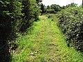 Benkid77 Puddington-Shotwick footpath 46 110809.JPG