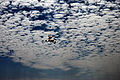 Bird and sky (8711666244).jpg