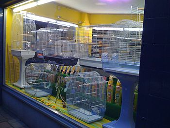 English: Cages for small birds in a shop windo...