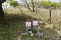 Biwako valley10n.jpg