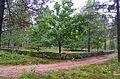 Björketorps kolerakyrkogård från nordöst.JPG