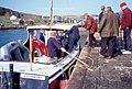 Boat trips - geograph.org.uk - 25666.jpg